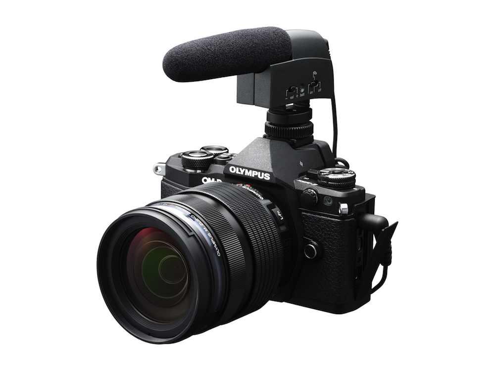 OM-D E-M5 mk  II video rig